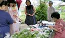 健康野菜即売